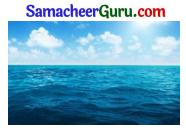 Samacheer Kalvi 3rd tamil Guide Term 2 Chapter 5 வாலு போயி கத்தி வந்தது! டும் ... டும் ... டும் ... டும் 2