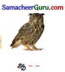 Samacheer Kalvi 3rd tamil Guide Term 2 Chapter 6 எழில் கொஞ்சும் அருவி 11