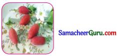 Samacheer Kalvi 3rd tamil Guide Term 2 Chapter 8 நட்பே உயர்வு 2