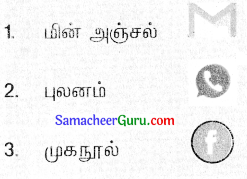 Samacheer Kalvi 3rd tamil Guide Term 3 Chapter 1 உள்ளங்கையில் ஓர் உலகம் 8
