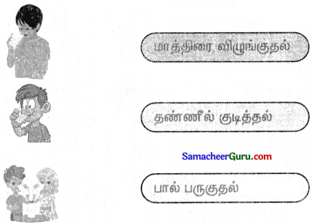Samacheer Kalvi 3rd tamil Guide Term 3 Chapter 2 தாக்கணாங்குருவியம் ஒட்டகச்சிவிங்கியும் 4